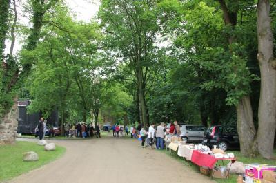 Foto zu Meldung: Stadtfest und 10 Jahre Archäo-Park Freyenstein