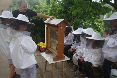 Foto zu Meldung: Dem Geheimnis der Honigmacher auf der Spur