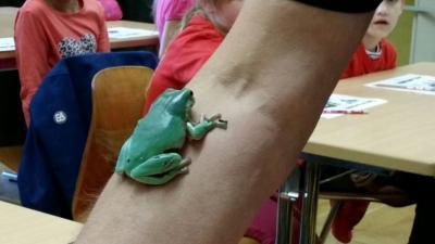 Foto zur Meldung: Besuch in der Zooschule
