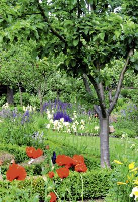 Foto zu Meldung: Offene Gärten 2017 in Potsdam, Berlin und Umland: Haupttermin am kommenden Wochenende