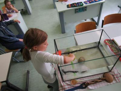"""Vorschaubild zur Meldung: """"Piraten können alles!"""" - Flex A zu  Besuch im Physikfachraum der Oberschule Glöwen."""