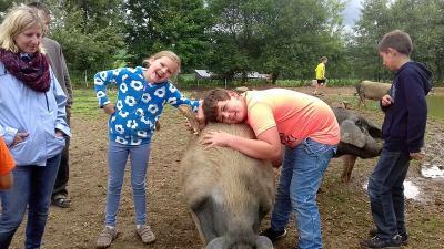 Foto zur Meldung: Zu Besuch bei den glücklichen Schweinen