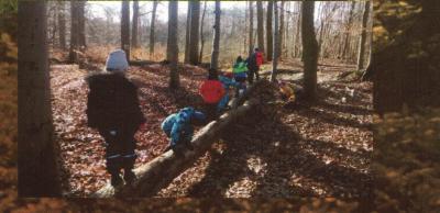 Foto zu Meldung: 'Waldzwerge' gesucht