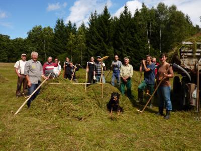 """Vorschaubild zur Meldung: Aktionstag """"Sensenmähkurs im Dreba-Plothener Teichgebiet"""""""