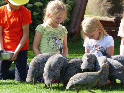 Foto zu Meldung: Kunterbuntes Ferienprogramm