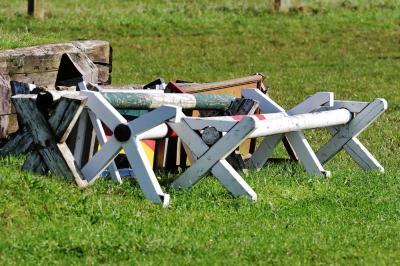 Foto zur Meldung: Pferde-Gymnastik – Cavaletti-Lehrgang bei Beeke Jankowski
