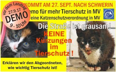 Vorschaubild zur Meldung: Wir brauchen eure Unterstützung in Schwerin!!
