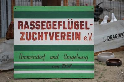 Vorschaubild zur Meldung: 60 Jahre Rassegeflügelzuchtverein