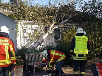 Einsatz ab Seesteraudeich: Ein umgestürzter Baum auf einem Wohnhaus