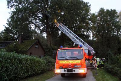 Vorschaubild zur Meldung: Baum droht auf Haus zu stürzen