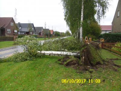 Vorschaubild zur Meldung: Schwere Schäden durch Sturmtief Xavier