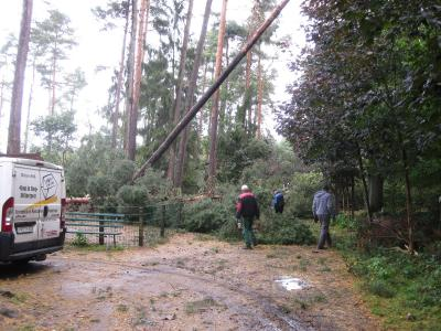 Foto zu Meldung: Sturmschäden im Perleberger Tierpark