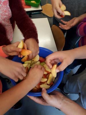 Foto zur Meldung: Apfelprojekt in Primarstufe