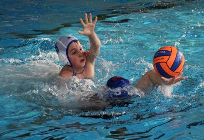 Foto zu Meldung: Wasserball U14-Sachsenliga in Görlitz