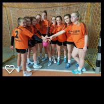 Foto zur Meldung: von Saldern - doppelter Kreissieger im Handball