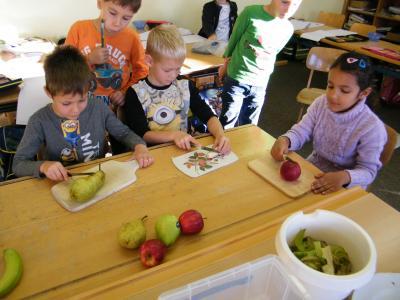 Das Bild zeigt Schüler der ersten Klasse beim Schneiden des Obstes für das Müsli.