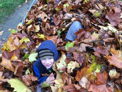 Foto zur Meldung: Herbstputz auf dem Hockeyplatz