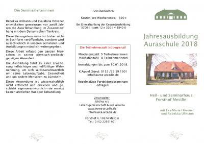 Auraschule Programm