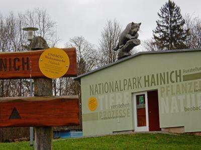 Die Wildkatze auf dem Dach lockt zukünftig die Besucher in die Nationalpark-Information Harsberg. Foto: Cornelia Otto-Albers