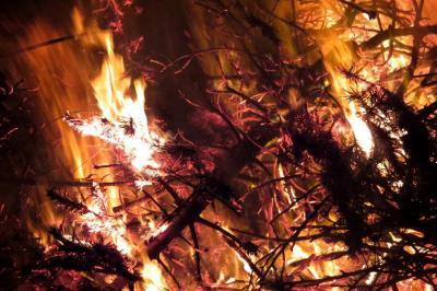 Nur allzu schnell können ausgetrocknete Adventsgestecke und Weihnachtsdeko zu brennen beginnen (Foto: Kay Stieler, FF Seester)