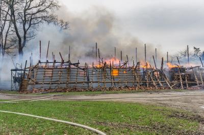 Vorschaubild zur Meldung: Scheunenbrand in Klosterseelte - 800 Schweine verendet