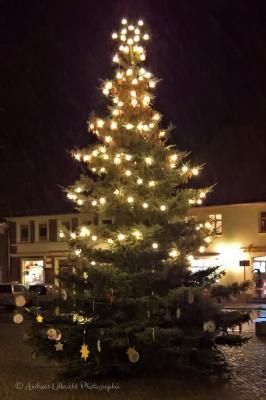 Foto zur Meldung: Weihnachtsbaum 2017