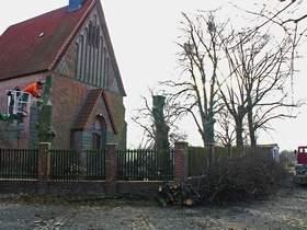 Vorschaubild zur Meldung: Kirchenlinden zu Kleinholz geschreddert