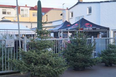 Foto zur Meldung: Weihnachtsbaumverkauf 2017