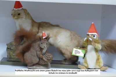 Foto zur Meldung: Die Tiere im Lehrerzimmer wünschen schöne Weihnachten!