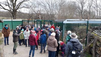"""Vorschaubild zur Meldung: Erlebnisreicher Jahreswechsel im """"Urwald-Life-Camp"""""""