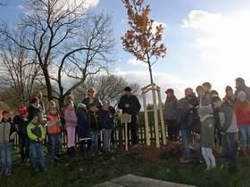 Vorschaubild zur Meldung: Gemeinde lässt Jubiläumsbäume gedeihen