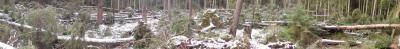 Vorschaubild zur Meldung: Schwere Sturmschäden im Forstrevier Berka nach Friederike