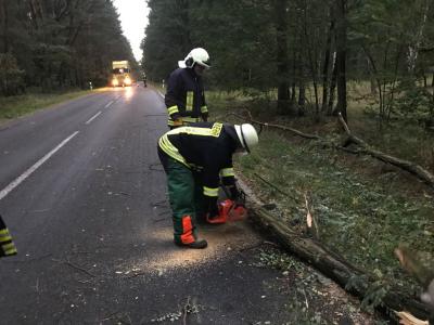 Foto zu Meldung: Feuerwehren durch Orkan Friederike gefordert