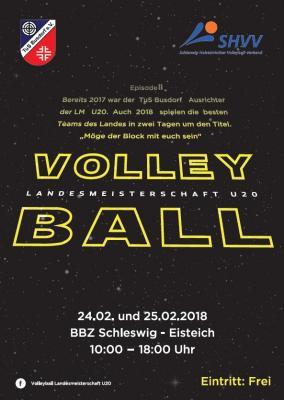 Foto zu Meldung: Volleyball - Landesmeisterschaft U20