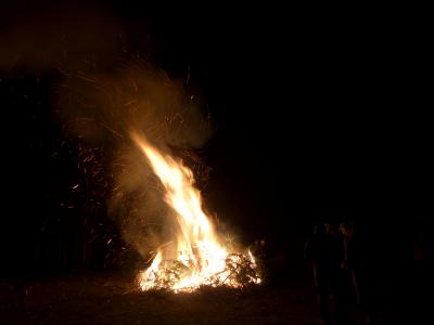 Foto zur Meldung: Tannenbaumverbrennen in Sülstorf