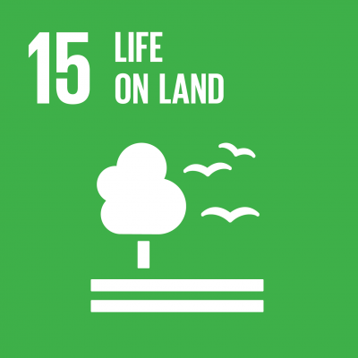 Sustainable Development Goal 15: Land-Ökosysteme schützen