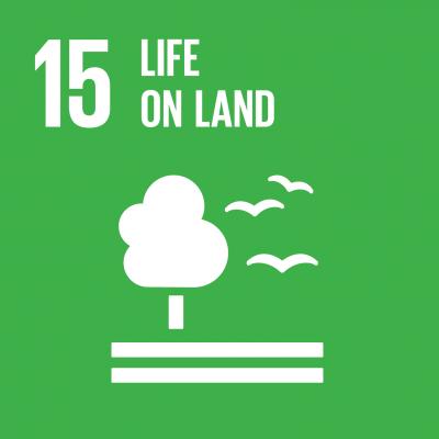Sustainable Development Goal 15: Land-Ökosysteme schützen
