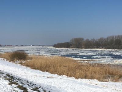Die Elbe bei Haue am 03.03.2018