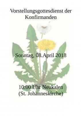 Foto zur Meldung: Konfirmation 2018 in der Peenestadt Neukalen