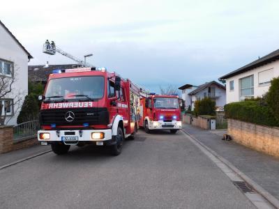Vorschaubild zur Meldung: +++Schornsteinbrand in Saulheim+++