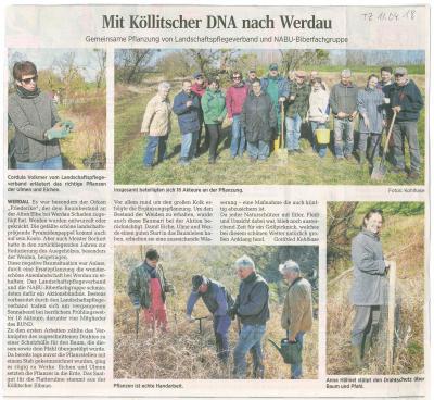 Vorschaubild zur Meldung: Baumpflanzung in der Elbaue bei Werdau