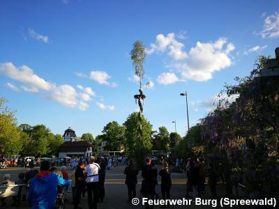 Vorschaubild zur Meldung: Burger Feuerwehren stellen Maibaum auf