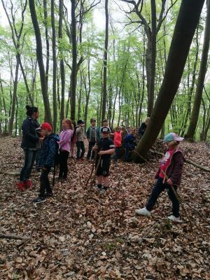 Foto zur Meldung: Zu Fuß in der Natur – Wandertag der Klasse 1d