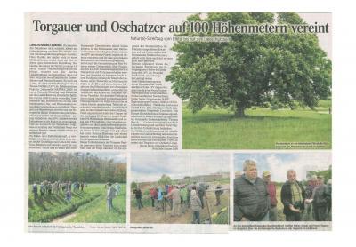 Torgauer Zeitung, 9. Mai 2018