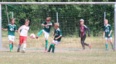 Mit viel Kampf und Einsatz erkämpfte sich die F-Jugend  des Demminer SV ( grüne Trikots ) mit einem Sieg gegen Malchin II den  Einzug in die Finalrunde