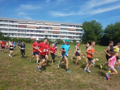 Vorschaubild zur Meldung: Läufer bewältigen die Hitze bravourös