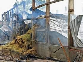 Vorschaubild zur Meldung: Großbrand verlangt Kameraden alles ab