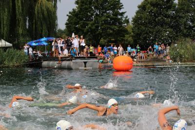 Vorschaubild zur Meldung: Freiwassermeisterschaften im See Freigericht West in Großkrotzenburg