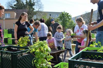 Der erste Gemeinschaftsgarten in Nauen wurde im Mai 2017 eröffnet. Foto: N. Faltin, Stadt Nauen