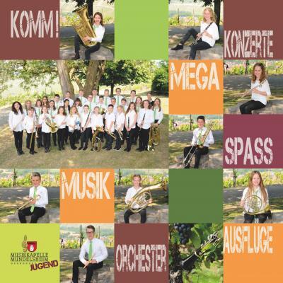 Vorschaubild zur Meldung: Neues Kampagne zur Instrumentalausbildung